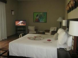Deluxe Jr. Suite Oceanfront with plunge pool