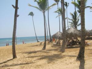 Beach wedding area. Sand isn't as white as Bavaro, but still soft